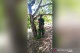 Seorang anggota TNI ditemukan tewas tergantung di pohon dengan tangan terikat ke belakang