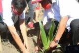 Pemprov Sulut bantu sarana produksi petani  Minahasa Selatan