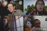 BOS: pencegahan karhutla hindari bencana manusia-orangutan