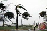 BMKG Yogyakarta minta masyarakat waspadai potensi angin kencang