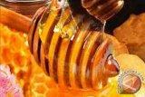 Penggunaan madu bisa atasi pilek lebih baik dari obat