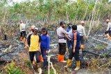 Kebakaran lahan di Aceh Barat meluas, begini penjelasannya