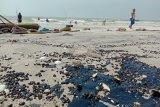 Limbah seperti ter aspal yang mengotori pantai Lampung Timur
