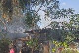 20 jiwa kehilangan tempat berteduh akibat kebakaran di Tarakan