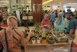 Festival tanaman hias di pusat perbelanjaan