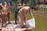 Wagub tebar bibit, produktif usaha ikan air tawar sejahterakan petani