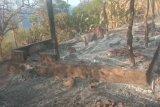 Puluhan rumah adat  di Lembata terbakar