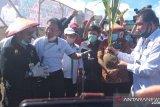 Menteri Pertanian galakkan kawasan korporasi perkuat sektor pertanian