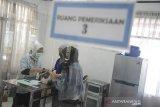 Seorang Dokter Hewan memeriksa seekor kucing sebelum menyuntikkan vaksin rabies gratis bagi hewan peliharaan di UPT Klinik Hewan, Bandung, Jawa Barat, Selasa (1/9/2020). Dinas Pangan dan Pertanian menggelar kegiatan vaksin rabies gratis bagi hewan peliharaan milik warga hingga 25 September 2020 dalam rangka
