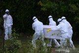 Jumlat kematian akibat COVID-19 di Indonesia masih melampaui rata-rata dunia