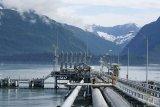 Harga minyak dunia sedikit lebih rendah, abaikan penutupan Teluk Meksiko