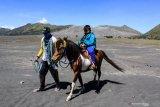Pemilik mengantarkan pengunjung berkuda di lautan pasir Gunung Bromo, Probolinggo, Jawa Timur, Minggu (6/9/2020). Meskipun aktivitas wisata di Gunung Bromo sudah dibuka sejak (28/8) setelah tutup selama enam bulan sejak maret 2020, para pemilik kuda masih sepi pendapatan karena pembatasan pengunjung. Antara Jatim/Umarul Faruq/zk