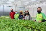 IPB University dukung peningkatan kapasitas petani
