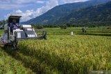 PUPR alokasikan Rp8,68 triliun di 2021 untuk mendukung ketahanan pangan