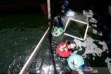 Petugas Balai Perikanan Budidaya Air Payau Ujong Bate Kementerian Kelautan dan Perikanan (KKP) memanen ikan kakap putih hasil budidaya di Aceh Besar, Aceh, Rabu (9/9/2020). KKP menargetkan perikanan budidaya menjadi salah satu penyuplai kebutuhan ikan guna merealisasikan program Lumbung Ikan Nasional (LIN). Antara Aceh/Irwansyah Putra