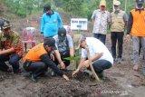 Masyarakat Desa Sundan OKU budidayakan  tanaman Porang