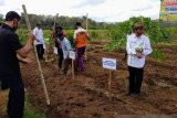 Petani Gunung Kidul diimbau bersiap memasuki masa tanam padi