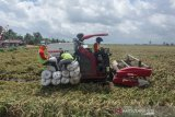 Mentan: lumbung pangan ciptakan lapangan kerja