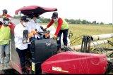 Gubernur Kalteng siap tingkatkan pembangunan jalan di kawasan 'food estate'