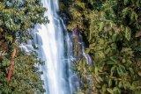 Pemerintah Desa Pusar jadikan Bukit Katung  objek wisata alam