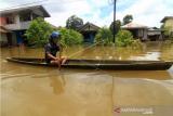 Seorang warga mendayung perahu saat melintasi banjir di kawasan Teluk Barak, Putussibau Selatan, Kabupaten Kapuas Hulu, Kalimantan Barat, Minggu (13/9/2020). Badan Penanggulangan Bencana Daerah Kapuas Hulu menyatakan berdasarkan data per hari Minggu (13/9/2020) terdapat seratus rumah warga di lima kecamatan yaitu Putussibau Utara, Putussibau Selatan, Bika, Kalis dan Embaloh Hilir di kabupaten setempat yang terendam banjir akibat tingginya curah hujan selama beberapa hari terakhir. ANTARA FOTO/Jessica Helena Wuysang/aww.
