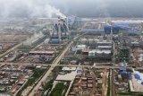 Bubur kertas produksi OKI Pulp capai 36 persen  ekspor Sumsel