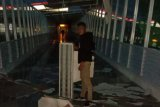 Pendapatan Pelindo Tanjungpinang merosot tajam akibat pandemi COVID-19