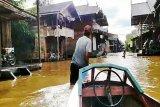 Ratusan rumah di Kapuas terendam banjir