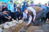 Korban banjir Luwu Utara butuh 1.295 huntap