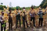 Pemkab Bartim apresiasi aksi nyata Polres dukung ketahanan pangan