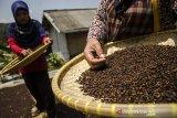 Petani memilah biji cengkih yang dijemur di Desa Sindanglaya Kabupaten Bandung, Jawa Barat, Kamis (17/9/2020). Petani cengkih di kawasan tersebut mengatakan penjualan biji cengkih mulai mengalami peningkatan pada musim panen saat ini meskipun disegi harga mengalami penurunan dari Rp.50 ribu menjadi Rp. 48 ribu per kilogram yang dipasarkan ke sejulah daerah di Jawa Barat dan Jawa Tengah. ANTARA JABAR/Novrian Arbi/agr