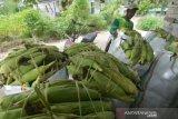 Harga jagung rendah,  Pemkab Poso berusaha cari pintu ekspor