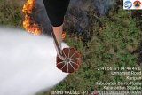 Many fires difficult to reach by South Kalimantan Ground Task Force