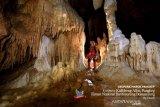 Geopark Maros Pangkep diminta siapkan berkas oleh UNESCO