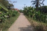 Program dana desa di Lebak  tingkatkan ekonomi warga