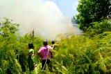 Kebakaran lahan di Kotim mulai meningkat