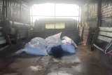 KJRI Johor: lima jenazah tenggelam WNI