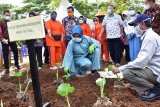 Pemprov Sulsel siapkan lahan agar petani kembangkan bawang