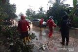 Pohon Tumbang di Jalan Raya Padang-Solok, PT Semen Padang kerahkan relawan TRC