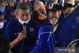 NasDem Sulteng jadikan pilkada perkuat pondasi masa depan partai