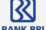 BRI Palembang lampaui target penyaluran  kredit PEN