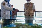 Menkominfo memastikan pembangunan infrastruktur TIK di Mandalika
