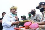Mentan sasar peluang pengembangan ekspor produk hortikultura di Kepri