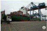 Nilai ekspor Lampung naik 25,24 persen