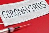 Penyebaran cepat corona diduga karena  virus bermutasi
