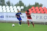 Meski kalah dari Bosnia-Herzegovina 0-1, Shin: Pemain sudah bekerja keras