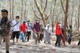 Dinas PU siapkan anggaran Rp4,2 miliar untuk wisata Pulau Lanjukang