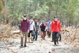 Gubernur HM Nurdin tetapkan Pulau Lanjukang percontohan wisata pulau di Sulsel