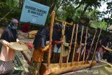 Sejumlah anak mementaskan gondang buhun pada acara Hariring Dangding di Imah Kolot, Cisaga, Kabupaten Ciamis Jawa Barat, Sabtu (26/9/2020). Hariring Dangding yang digelar setiap enam bulan sekali tersebut bertujuan untuk memperkenalkan tradisi budaya dan kesenian Sunda agar tidak punah oleh bahaya negatif perkembangan zaman, sekaligus mengajak warga untuk mempertahankan serta menggebangkan seni tradisi di lingkungan masyarakat. ANTARA JABAR/Adeng Bustomi/agr