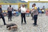 Kapolres Puncak Jaya berikan bantuan ternak di jemaat GIDI Yerusalem